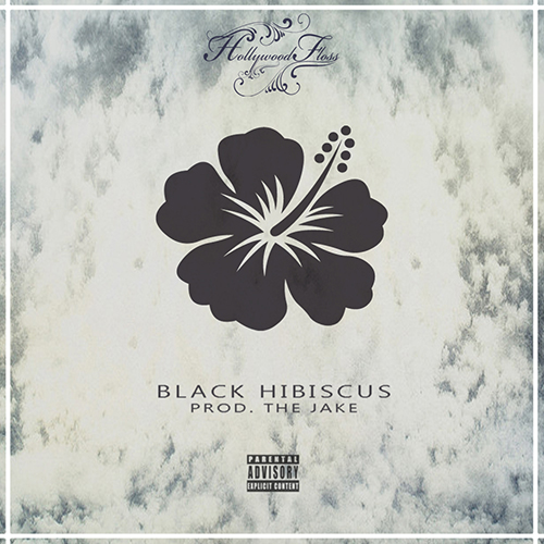 hollywood-floss-black-hibiscus