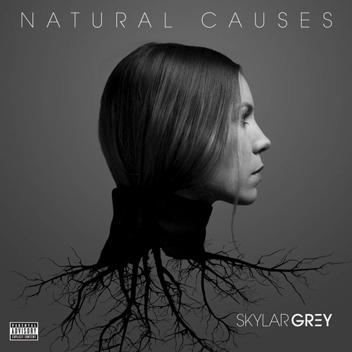 skylar-grey-natural-causes